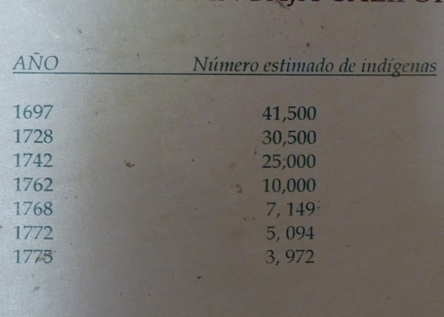 P1070754 (2)